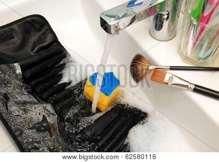 Purifying Brushes Case
