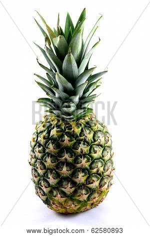 Pineapple On White