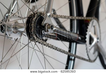 Bike Cassette On The Wheel