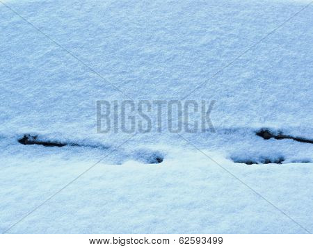 Pristine White Fresh Snow Cover Car Windshield