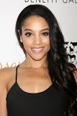 LOS ANGELES - MAR 29:  Bianca Lawson at the Humane Society Of The United States 60th Anniversary Gal