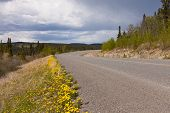 Deserted Rural Highway Yukon Territory Canada