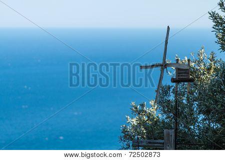 Coastal Landscape