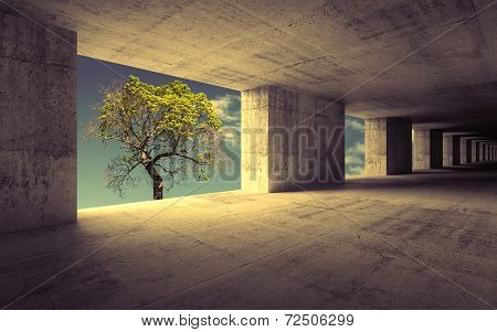 Empty Abstract Concrete Interior With Sky And Small Green Tree
