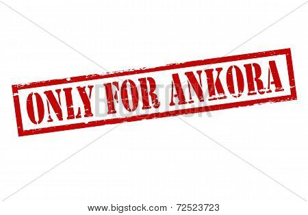 Only For Ankora