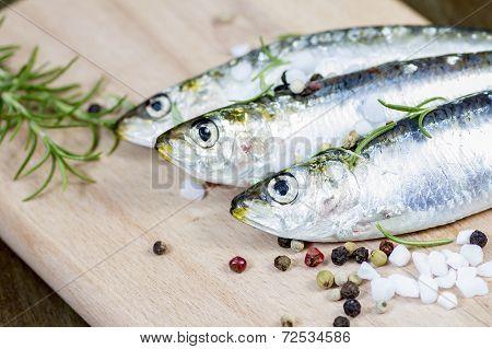 Raw Sardine With Spices