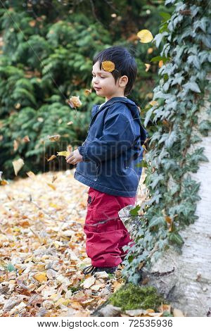 Child In Autumn Forest