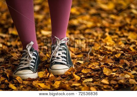 walking through autumn leaves background