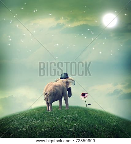 Elephant Contemplating A Flower