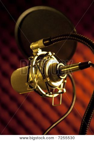 Condenser  Microphone  With Shock Mount And Stand