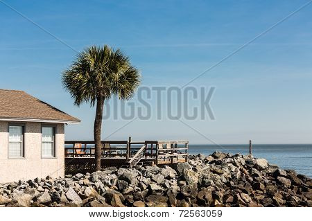 Wood Deck And Palm Tree Over Stone Seawall Under Blue Sky