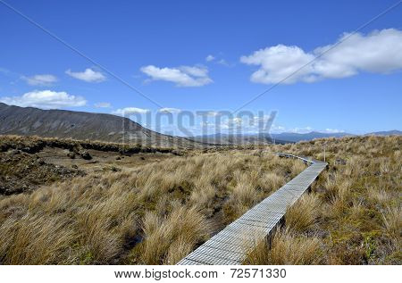 Tongariro Trail In New Zealand.