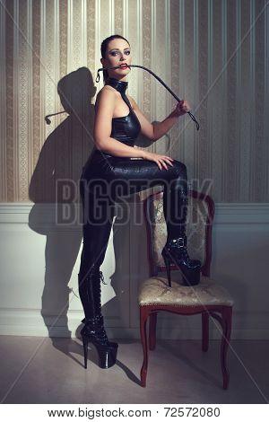 Sexy Woman Bdsm