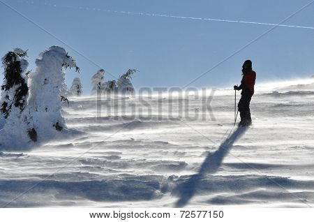 Back Country Skier (ski Touring)