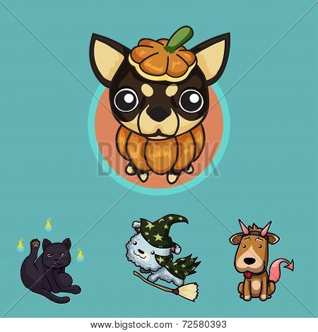 Pets in Halloween