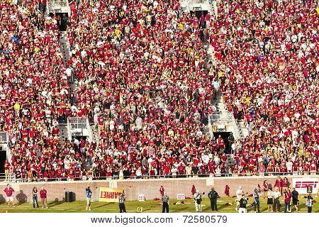 FSU Fans