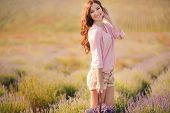 picture of lavender field  - Beautiful woman enjoys collecting blooming lavender on a large field of flowers in the countryside - JPG
