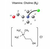 stock photo of neurotransmitter  - Structural chemical formula and model of vitamin choline  - JPG