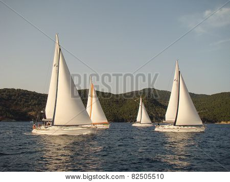 four yachts