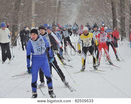 Sportsmans On The Ski Track