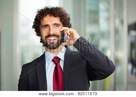 Portrait of a young executive talking on the cell phone