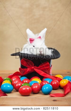 Cute but grumpy easter bunny sitting in magician hat with colorful dyed eggs