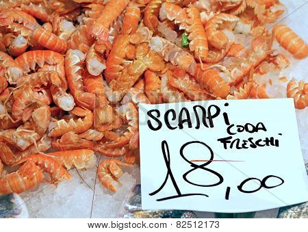 Scampi For Sale In The Italian Fish Market