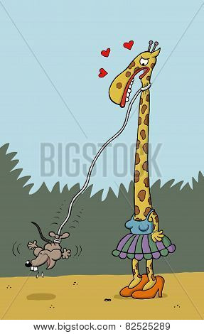 Mouse bungee jumps from Giraffe's neck