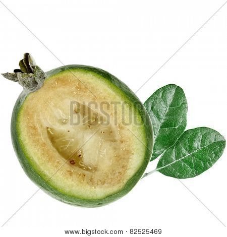 Feijoa (Acca sellowiana) - Pineapple Guava isolated on white background