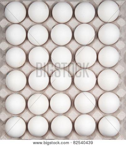 white eggs isolated on white