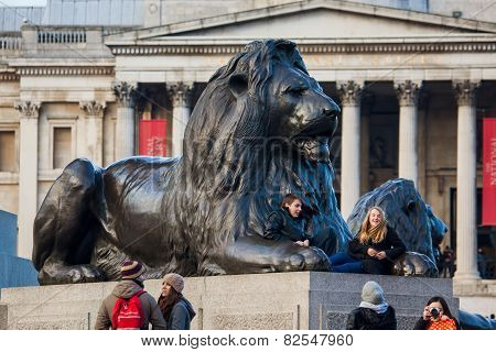Lion Sculpture In Trafalgar Square