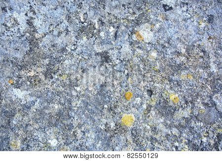 Authentic and weathered rock background