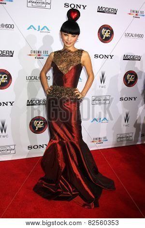 LOS ANGELES - FEB 8:  Bai Ling at the 2015 Society Of Camera Operators Lifetime Achievement Awards at a Paramount Theater on February 8, 2015 in Los Angeles, CA