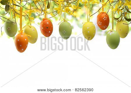 Easter eggs hanging on forsythia branches