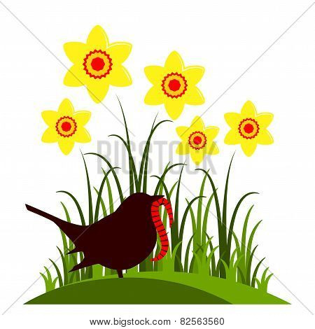 Daffodils And Bird