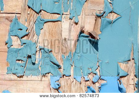 An old wooden door with peeling blue paint. Seamless background or wall paper image with interesting patterns of peeling blue paint on an old wooden door. Paint is important to help protect wood.