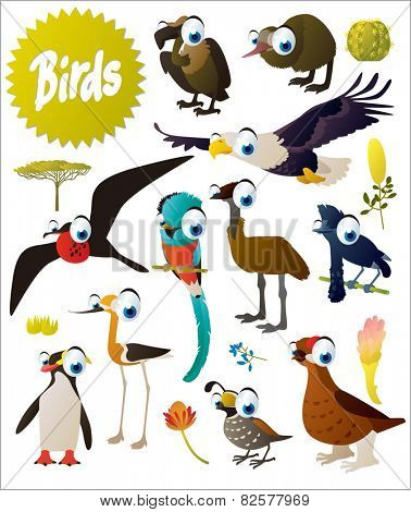big vector cartoon comic birds set: vulture, kiwi, eagle, emu, frigate, quetzal, umbrella bird, grouse, penguin, quail, stilt