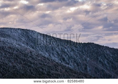Roan Mountain Winter Hike