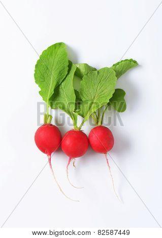 Three fresh red radishes on white background