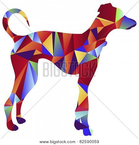 An image of a greyhound dog - polygon style.