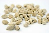 picture of cardamom  - seed of cardamom isolated on white . ** Note: Shallow depth of field - JPG