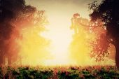 stock photo of mystique  - Mysterious Magic Forest Sunset Sunrise Romantic 3D Artwork - JPG