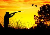 pic of hunters  - hunter in the field - JPG