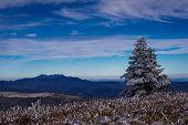 picture of blue ridge mountains  - Snow - JPG
