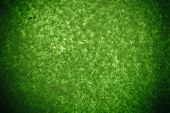 picture of mulberry  - Abstract Green handmade mulberry paper texture background - JPG