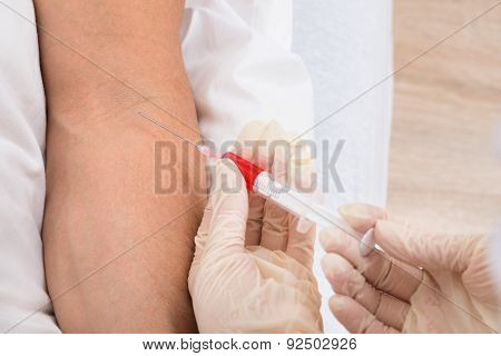 Doctor Taking Blood From Patient