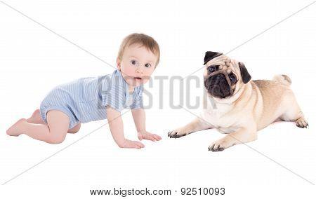 Funny Baby Boy Toddler And Pug Dog Lying Isolated On White