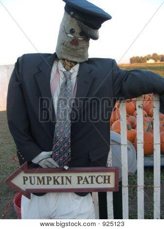 Pumpkin Patch Greeter