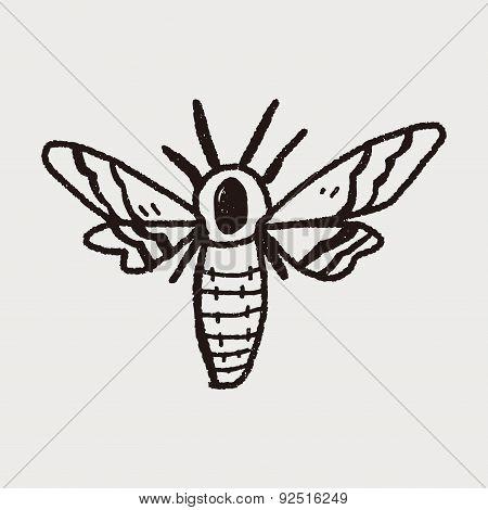 Moth Doodle