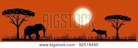 savannah landscape and animals